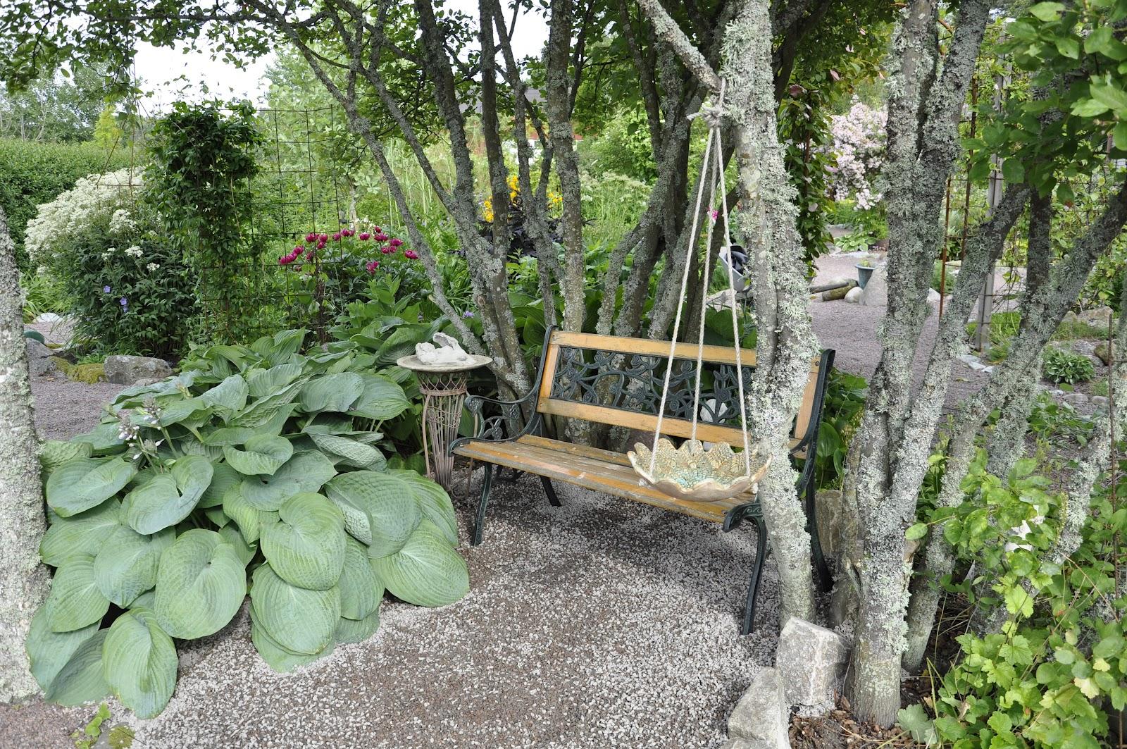 Trädgård Grus : Alen trädgård juni