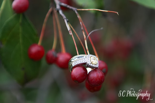 Wedding Ring photography, berries, yellow solitaire cushion cut halo, Niles, Michigan, Fernwood Botanical Garden, Wedding