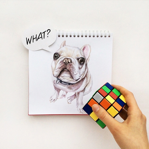 21-Stumped-Valerie-Susik-Валерия-Суслопарова-Cats-and-Dogs-Interactive-Animal-Drawings-www-designstack-co