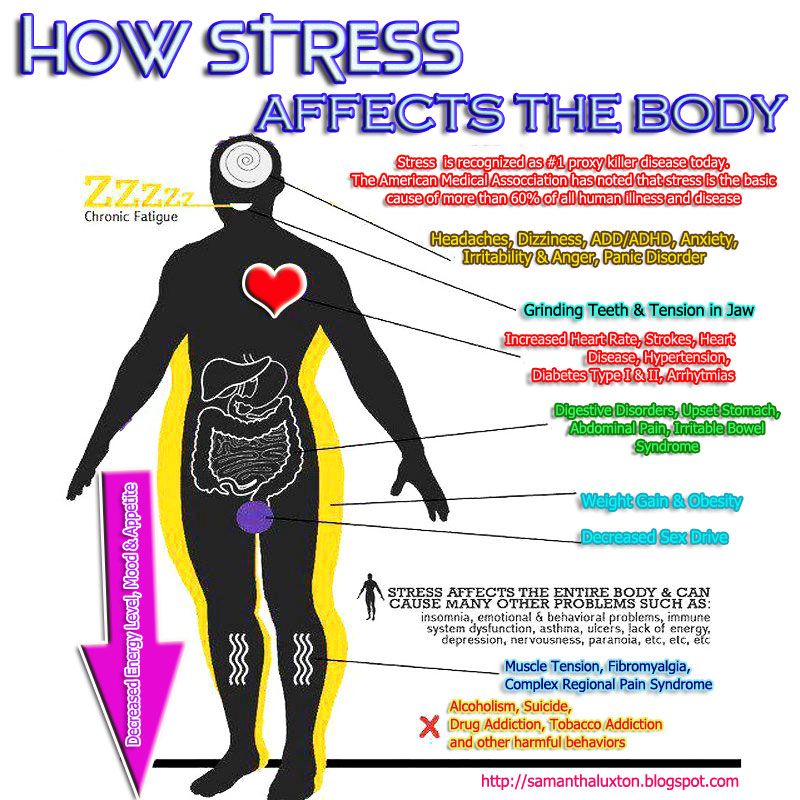 stress and its effects on the human body Musculoskeletal system when the body is stressed, muscles tense up muscle tension is almost a reflex reaction to stress — the body's way of guarding against injury and pain with sudden onset stress, the muscles tense up all at once, and then release their tension when the stress passes chronic stress causes the.