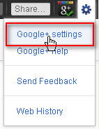 Google+ Settings menu