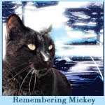 You Are In Our Hearts Mickey