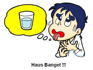 Haus - [www.zootodays.blogspot.com]