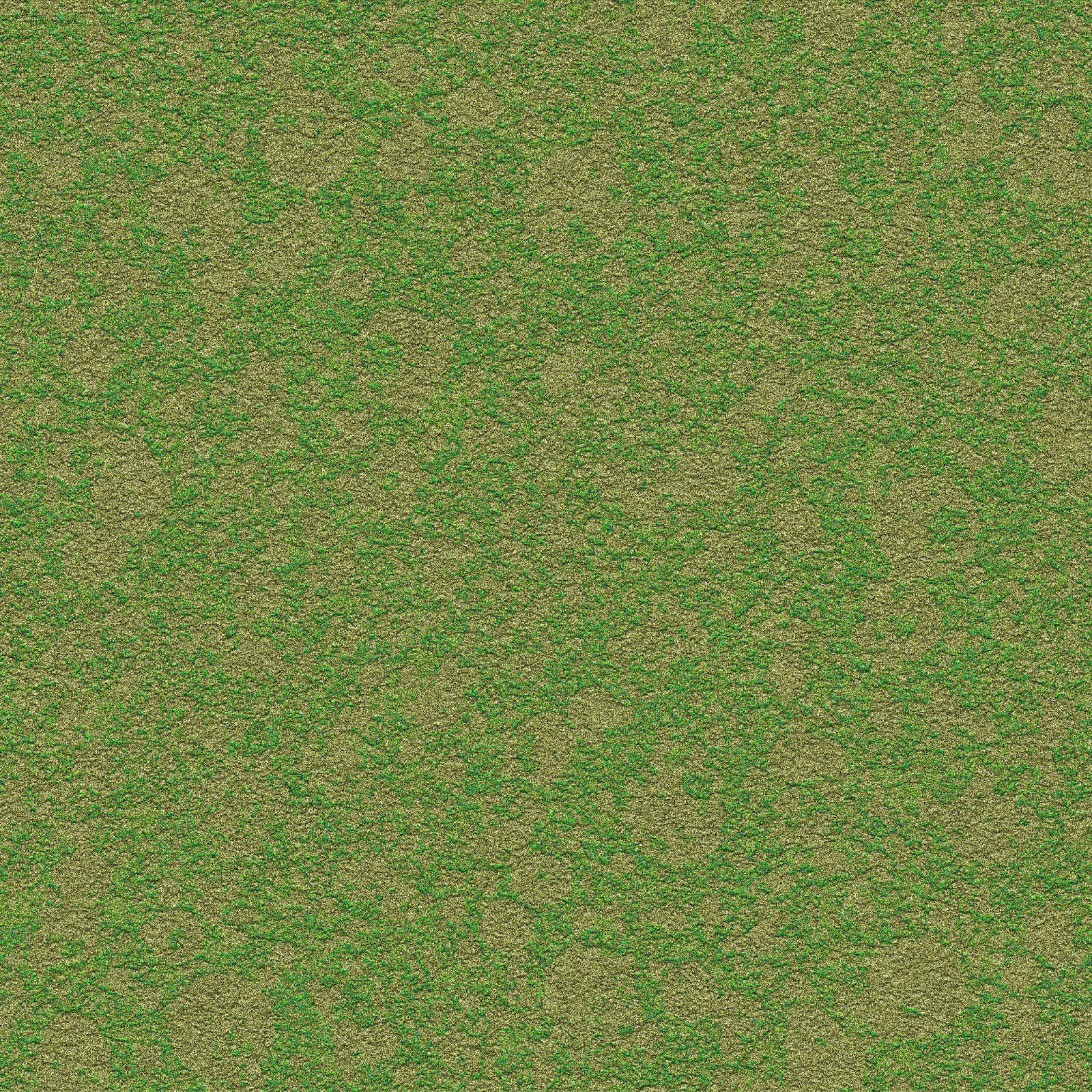 Dark_patch_april11_Green_grass_ground_land_dirt_aerial_top_seamless_texture