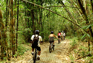 Bali countryside cycling tour - through the middle of bamboo forest.jpg