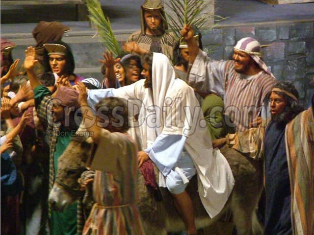 wallpapers and videos of palm sunday passion for lord