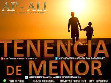 TENENCIA DE MENOR, DEMANDA DE TENENCIA.