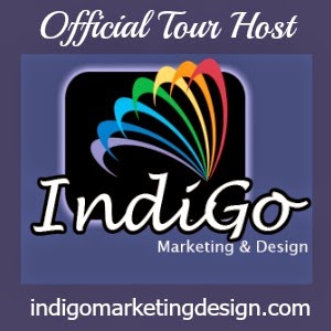 IndiGo Marketing & Design