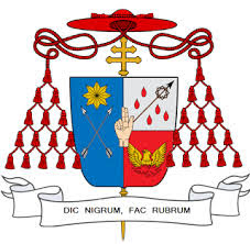 Cardinal Zuhlsdorf