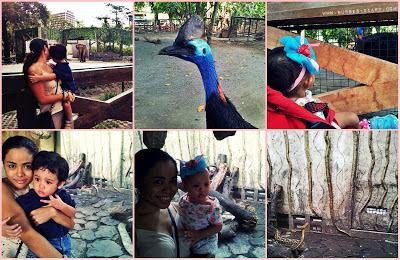 Visit to Manila Zoo