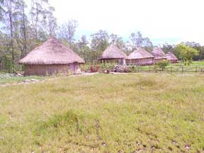Rumah Adat Lopo saga 100412