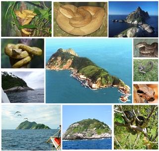 7 Pulau Paling Berbahaya Di Dunia
