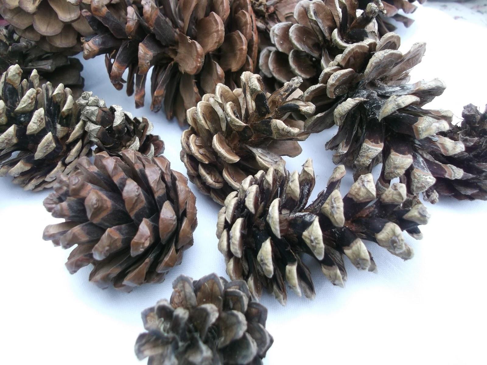 lella loves pine cone fireplace garland