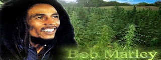 Couverture Facebook de Bob Marley