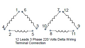 12 Leads Terminal Wiring Guide for Dual Voltage Delta Connected AC on three-phase transformer connection diagrams, motor capacitor wiring diagrams, single phase capacitor motor diagrams, baldor dc generator wiring diagram, 110-volt vacuum motor wiring diagrams, 115 230 motor wiring diagrams, single phase induction motor wiring diagrams, baldor ac drives, baldor single phase motor wiring, baldor 115 volt motor wiring diagram,