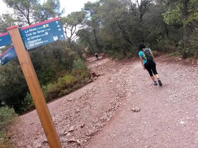Cami dels Monjos a La Mola