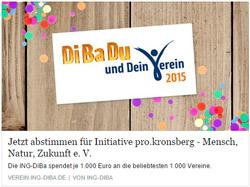 ING DiBa - DiBaDu und Dein Verein 2015