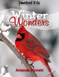 Winter Wonders Download N Go