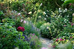 Åben have og tv-udsendelse