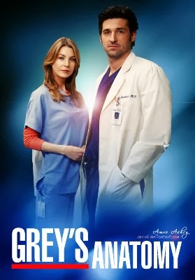 Download Grey's Anatomy 10ª Temporada