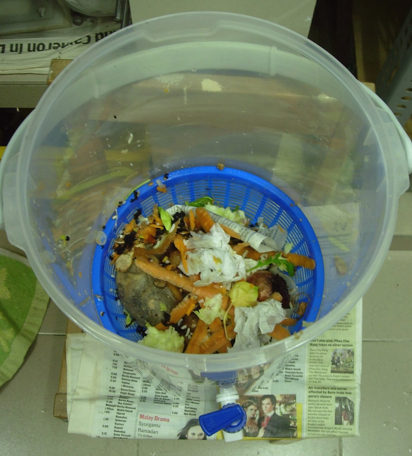Compost Diary Part 1