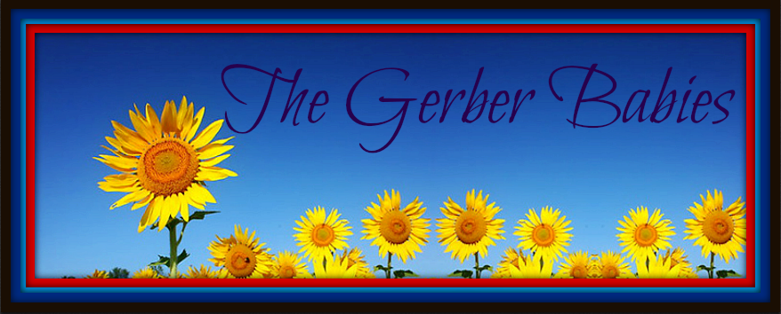 The Gerber Babies Blog