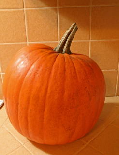 Large Pumpkin on Kitchen Counter