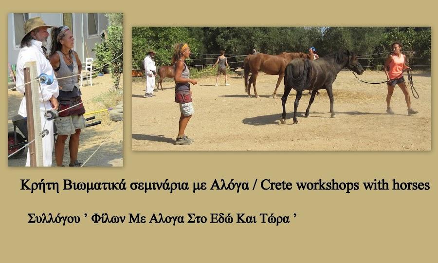 Μαθαίνοντας από τα άλογα...