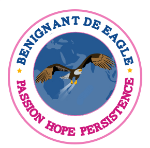 Benignant De Eagle Foundation: Global S.T.E.M education for young women and girls