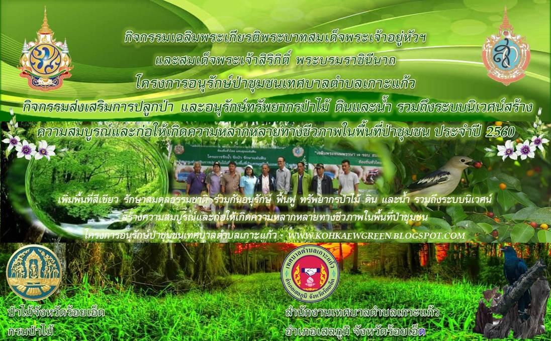 โครงการอนุรักษ์ป่าชุมชนเทศบาลตำบลเกาะแก้ว