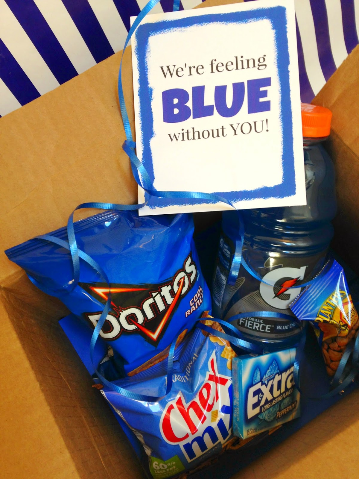 Michelle Paige Blogs Got The Blues Gift For College