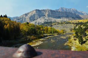 Montana Stream Flows