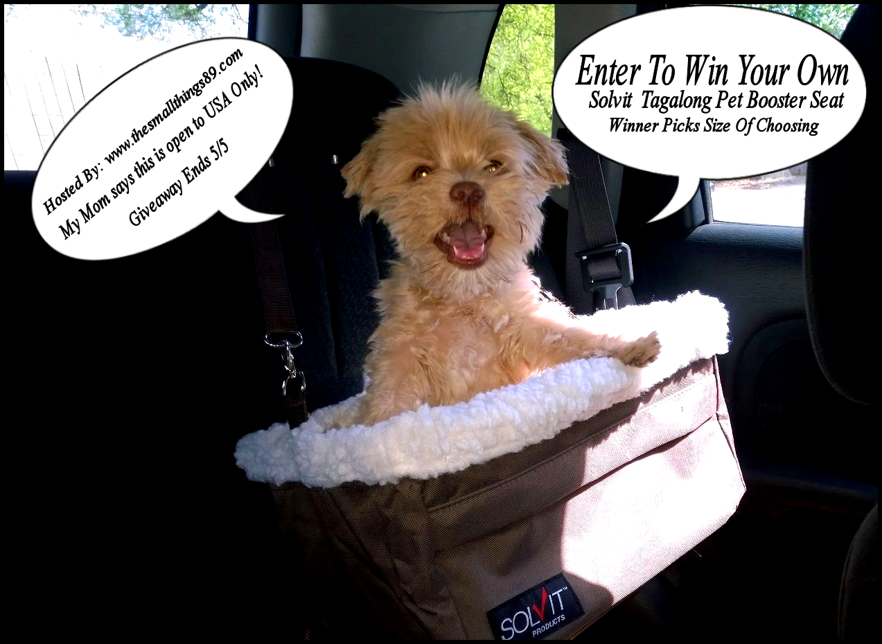 Solvit Dog Products Tagalong Booster Seat Review And Giveaway