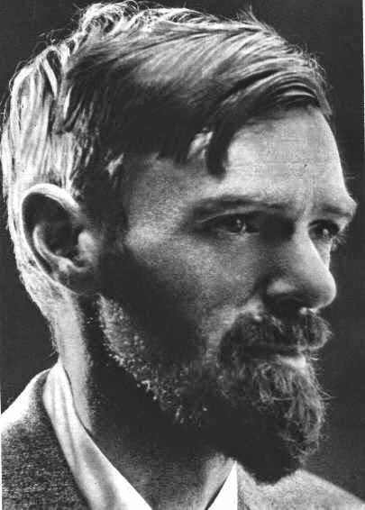 d.h. lawrence a collection of critical essays D h lawrence: a critical crusade helmut e gerber english literature in transition, 1880-1920, volume 6, number 3, 1963, p 177 (review) published by elt press.
