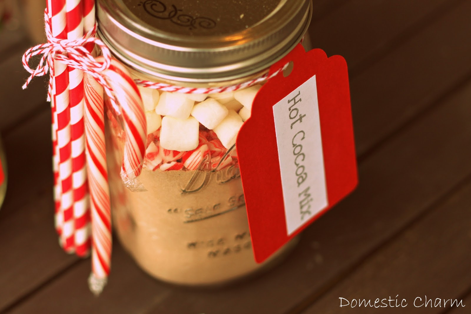 Peppermint Hot Chocolate In A Jar Mix