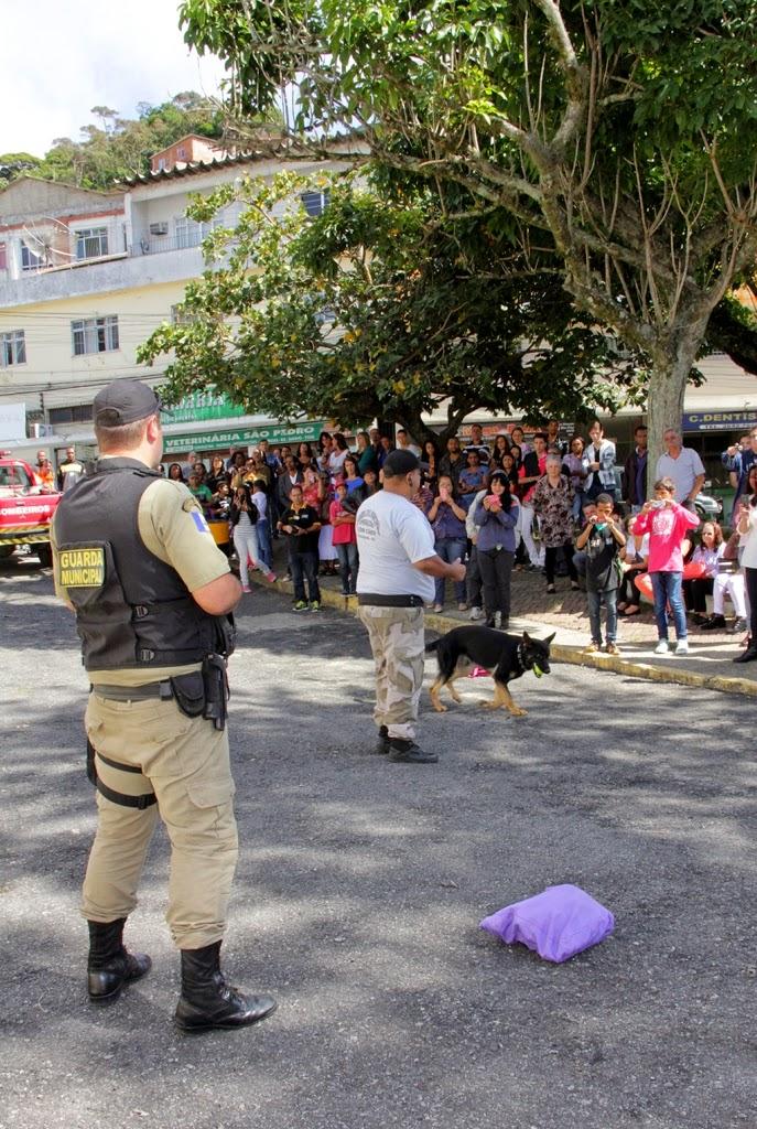 Demonstração da Cia de Operações com Cães da Guarda Municipal de Teresópolis