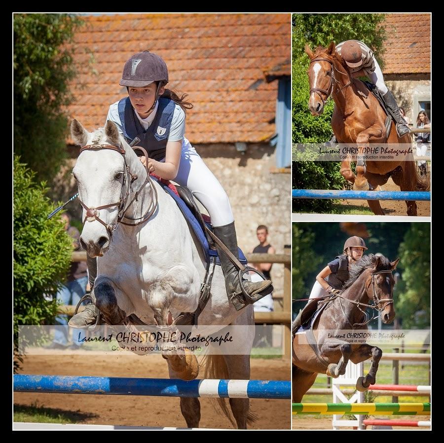 photographe concours equestres nantes