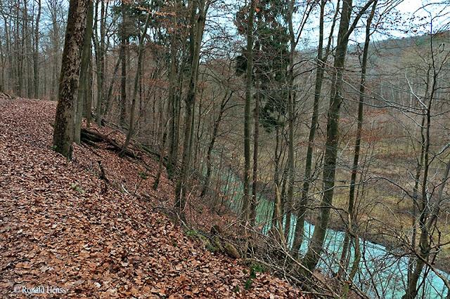 Saarland Fischbach Haldenrundweg Saarkohlenwald
