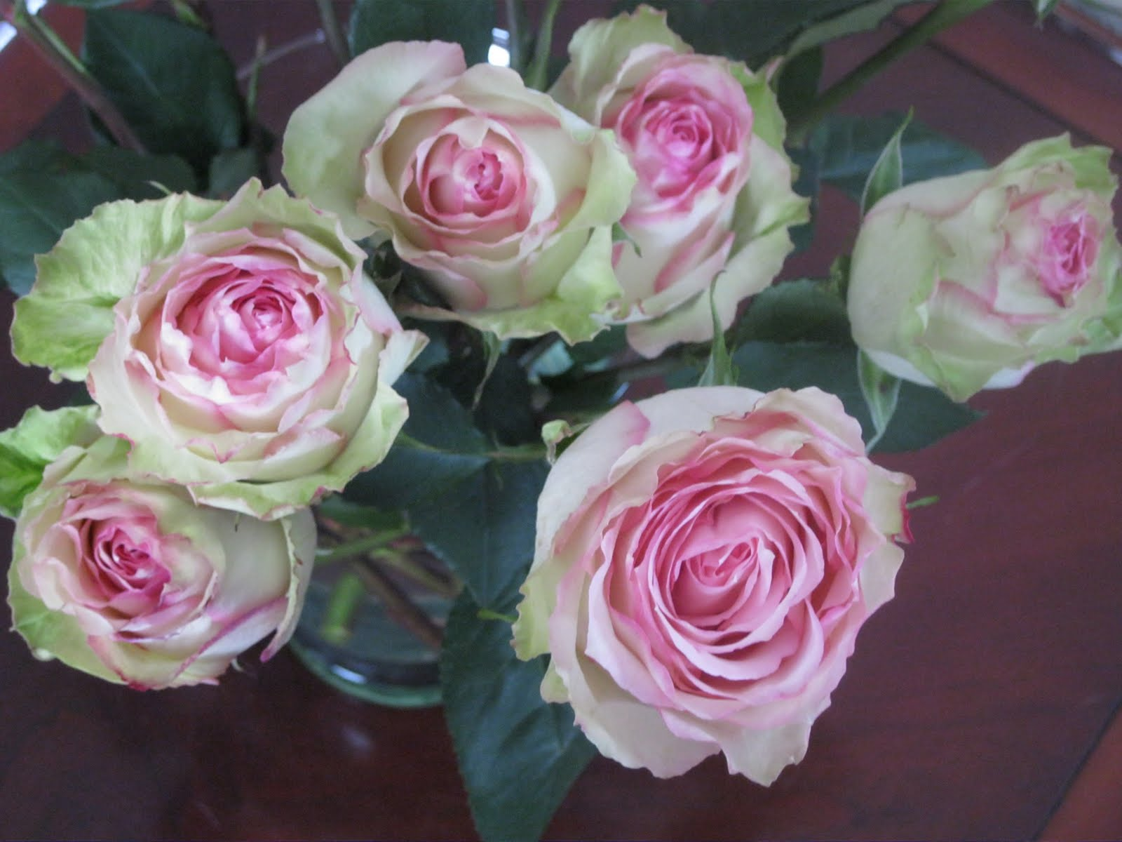 Green And Pink Roses ...Make It With...