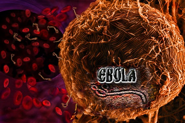Ebola was Predicted In The Bible Code