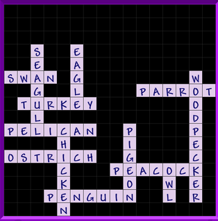 Binweevils Crossword Answers Level 4 - What bird am I?