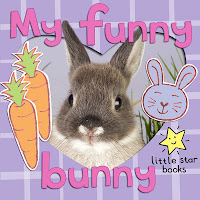 cover picture of My Funny Bunny, a children's illustrated ebook about rabbits