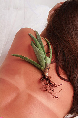 6 Easy Natural Remedies for Fast Sunburn Relief!