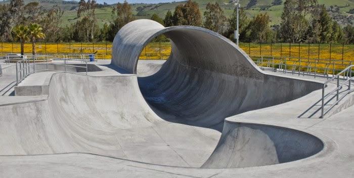 Gendeng ! Cowok Ini Bisa Meluncur Di Arena SkateBoard Pakai Kursi Roda