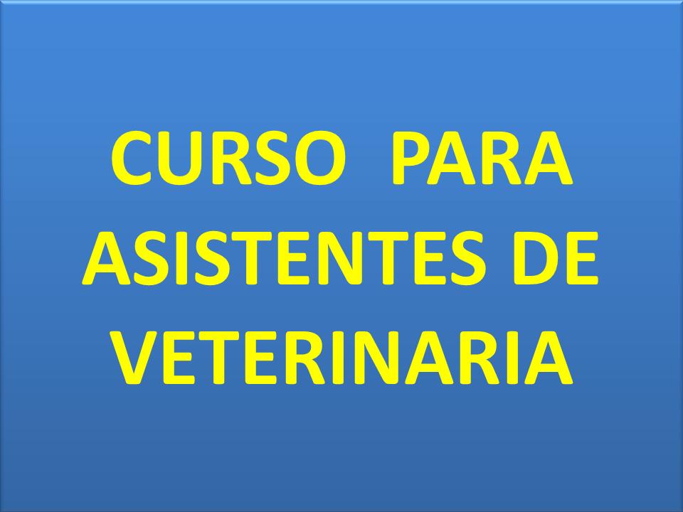 CURSO PARA ASISTENTES DE VETERINARIA