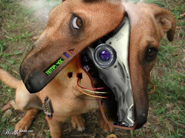 Amazing Robotic Animals Manipulations Funnilogy