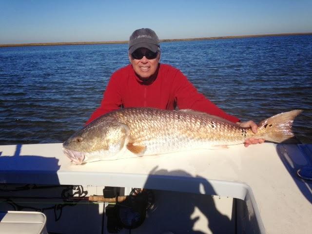 Biggest salt water fish ever caught international fishing for Largest saltwater fish