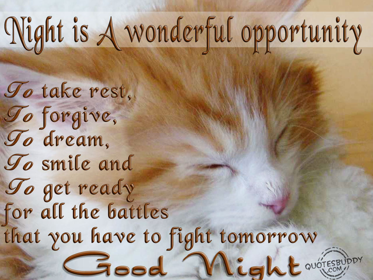 Goog Night Quotes - Good Morning Sms | Good Night Sms