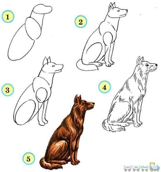 Cách vẽ một chú chó
