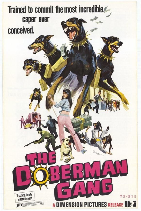 Doberman Robbing A Bank Movie